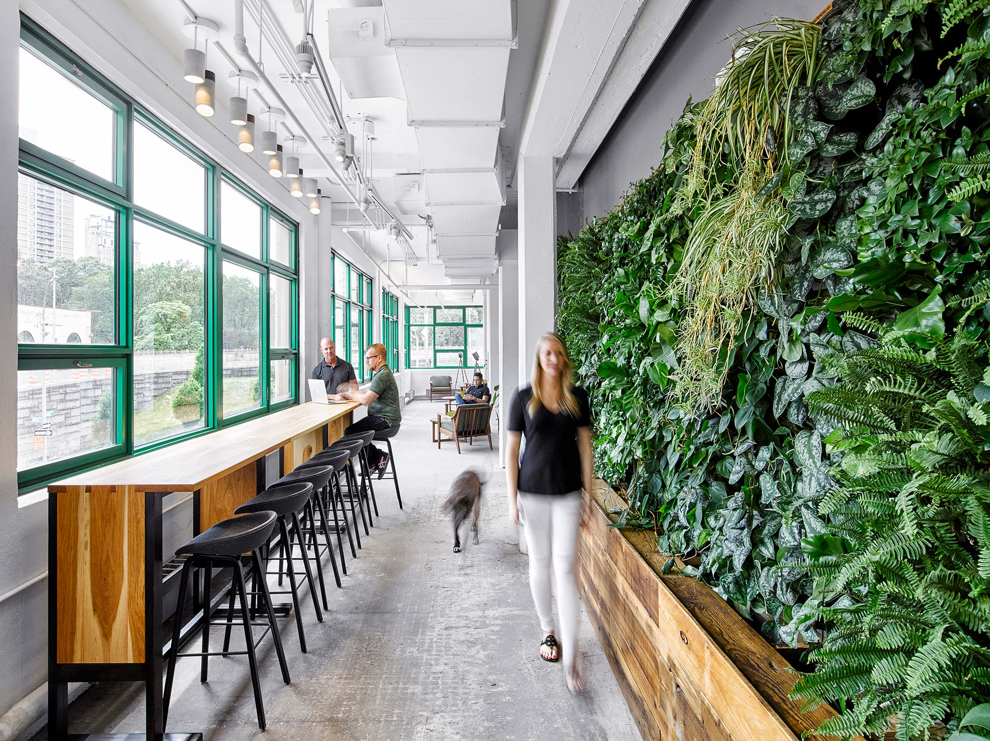 The Gensler-designed Etsy headquarters in Brooklyn, which achieved the Living Building Challenge (LBC) Petal Certification, incorporates biophilic design elements throughout the space and fosters a connection to the outdoors.